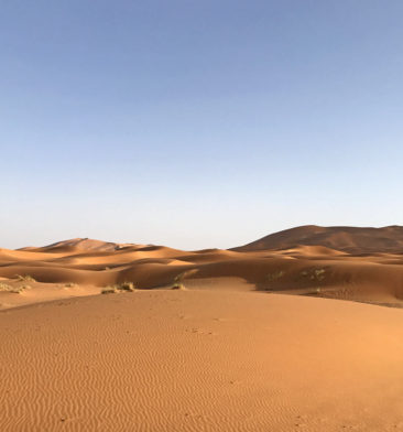 The desert dunes