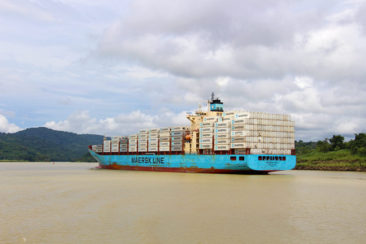 Ships in Lake Gatun