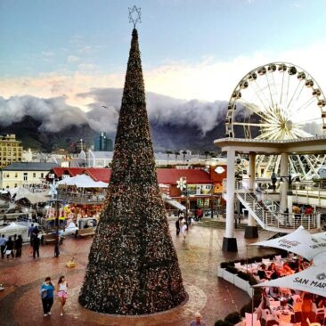 V&A Waterfront Christmas Tree