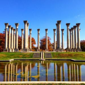 The Capitol Columns in Washington, DC