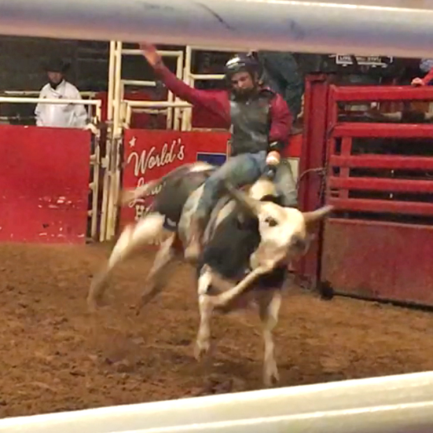 Bull Riding in Fort Worth