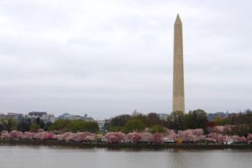 Washington Monument and the White House
