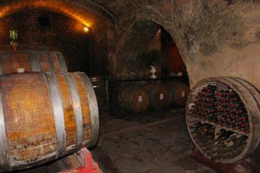 Fattoria di Cinciano wine cellar