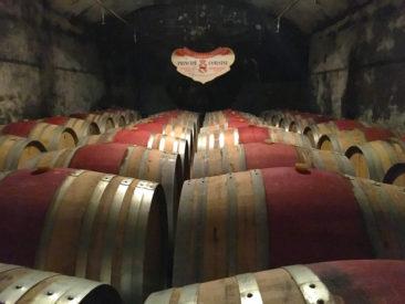 Wine Cellar at Principe Corsini