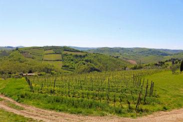 The Italian wine region of Tuscany