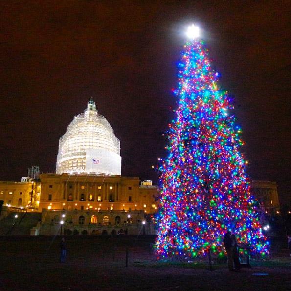 Destination Guide Washington DC Road Unraveled - Visiting The National Christmas Tree