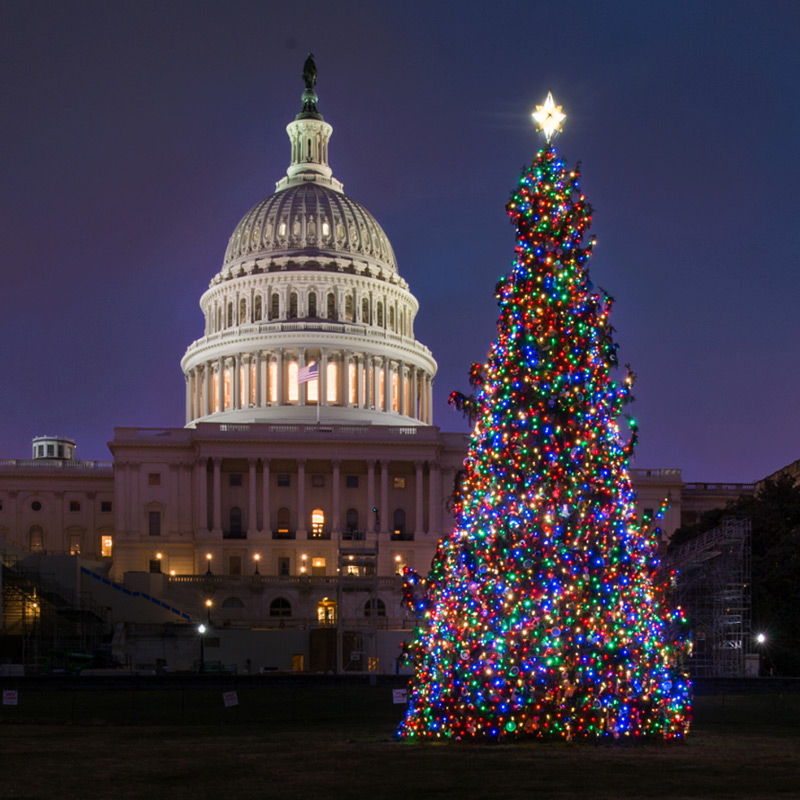 Christmas In Washington, DC: Holiday Traditions And