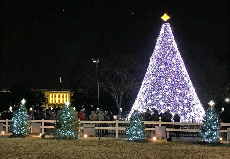 The National Christmas Tree in Washington, DC