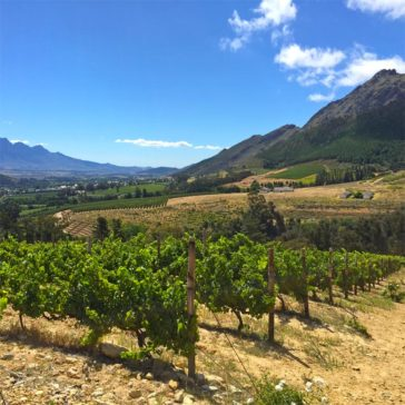 The Franschhoek Valley Wine Region in South Africa