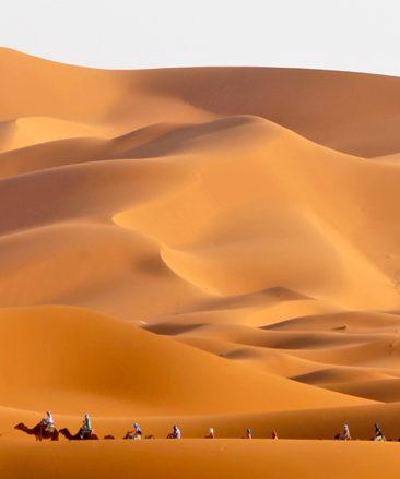The Saharan dunes of Morocco