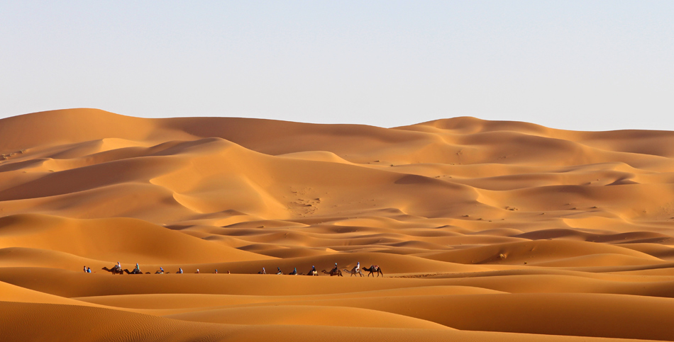 Camel Trekking and Desert Camping in the Sahara Desert