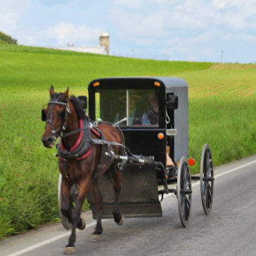 A Day in Pennsylvania's Amish Country