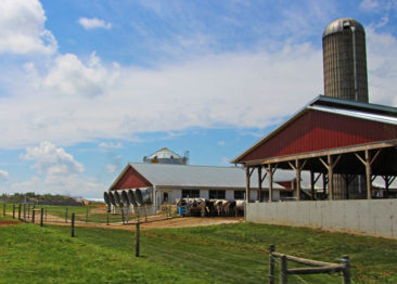 Farms in Amish Country