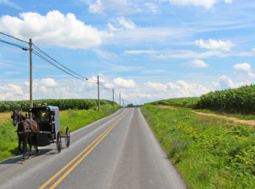 Amish Horse and Buggy in Pennsylvania