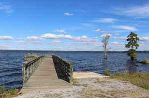 Lake Drummond Docks