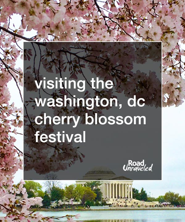 Visiting the Washington, DC Cherry Blossoms