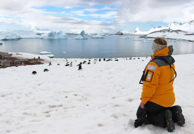 Up close with Penguins in Antarctica