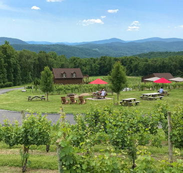 Fox Meadow Winery, Virginia