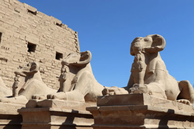 Sphinx statues in Karnak