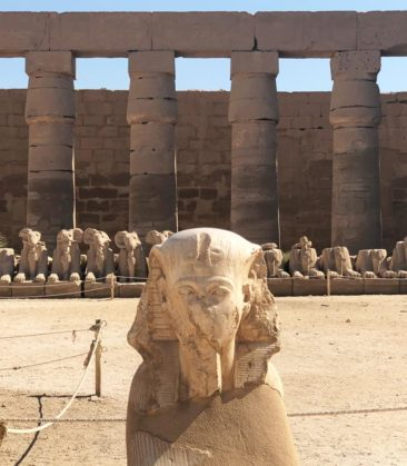 Sphinxes in Karnak Temple