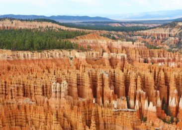 Rows of Hoodoos at Bryce Canyon National Park