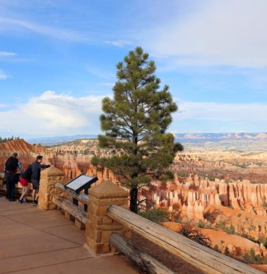 Viewing point in Bryce Canyon National Park