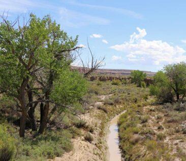 Rivers near Chaco Canyon