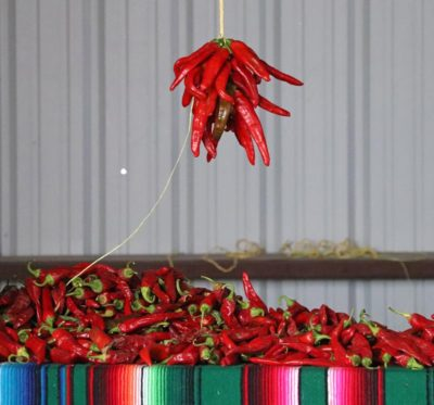 Hatch Chile Peppers- the best in the world!