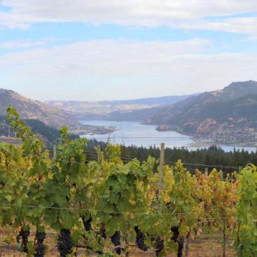 Washington Wine Country