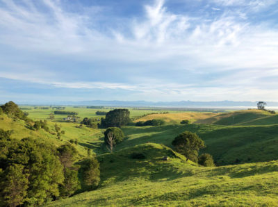 Fields outside Hobbiton in New Zealand