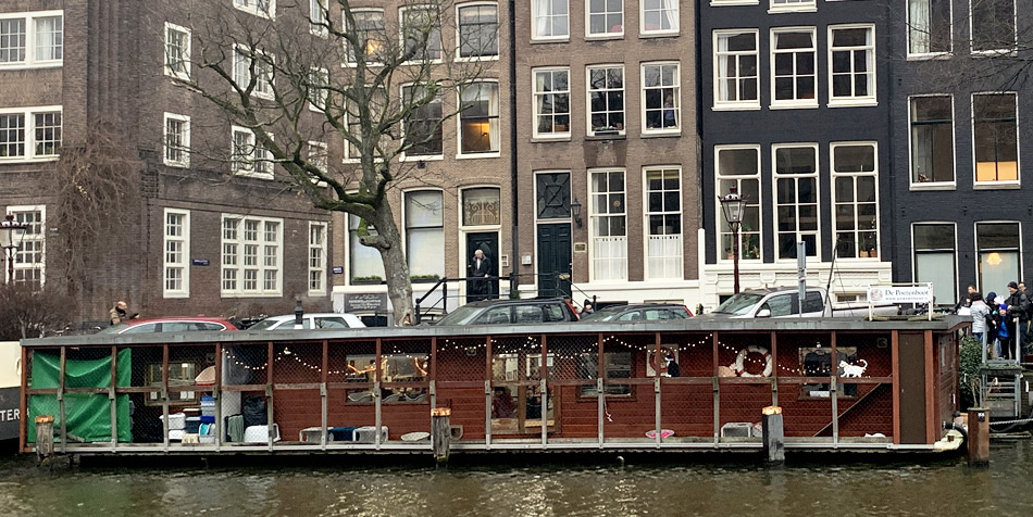 The Catboat of Amsterdam