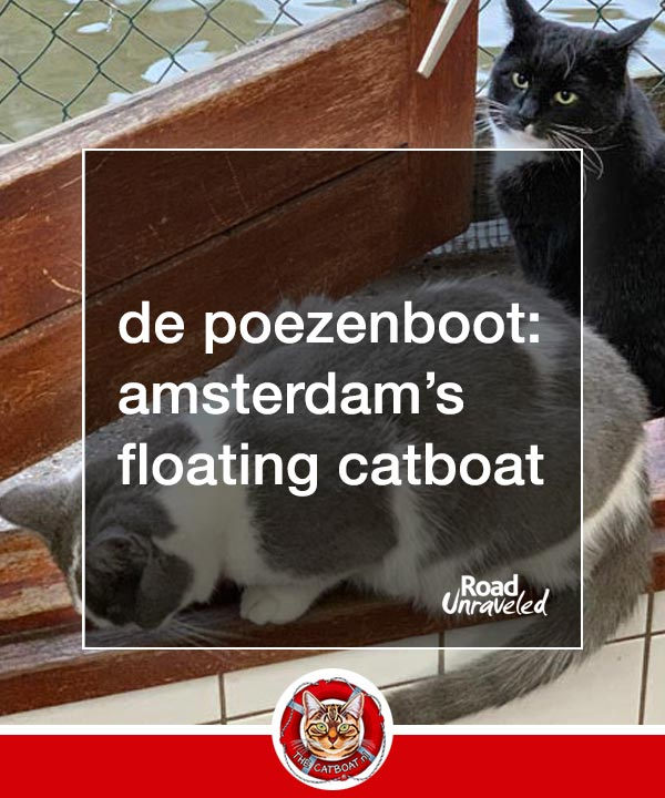 De Poezenboot: The Floating Catboat of Amsterdam