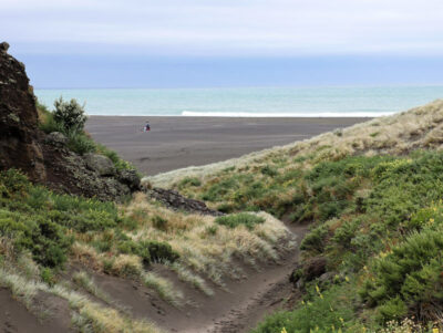 Black Sand Beaches outside Auckland