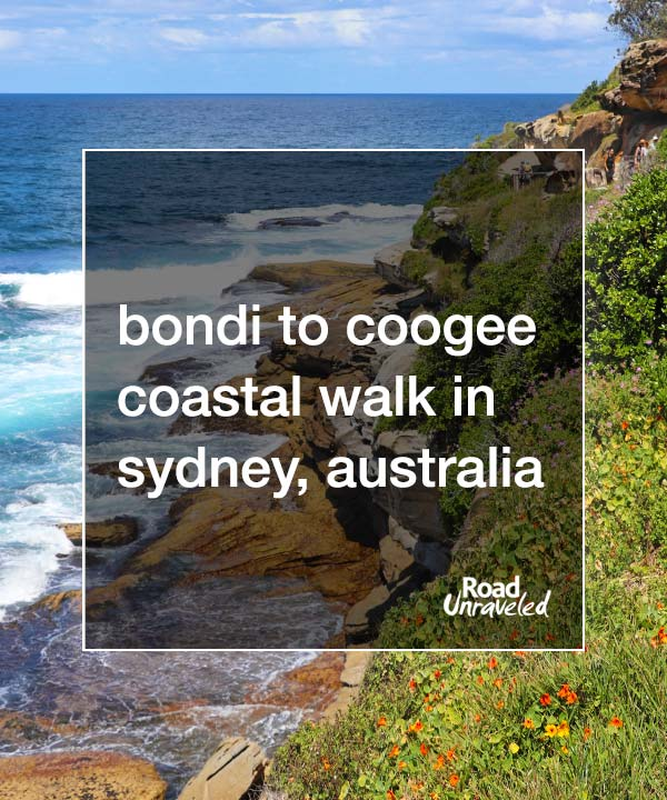 Why the Bondi to Coogee Walk Should Be on Your Sydney Itinerary