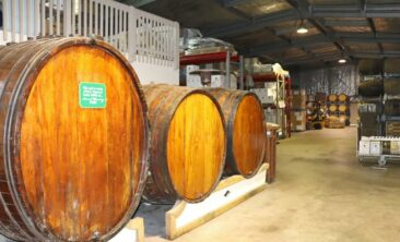 Wine Barrels in Auckland