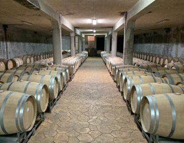 Bulgarian Wine Cellar