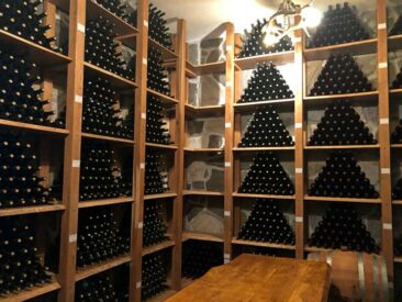 Wine Cellar in Bulgaria