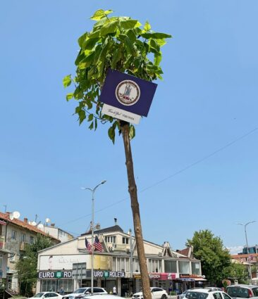 Virginia flag in Kosovo