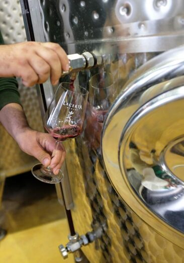 Wine straight from the tap!