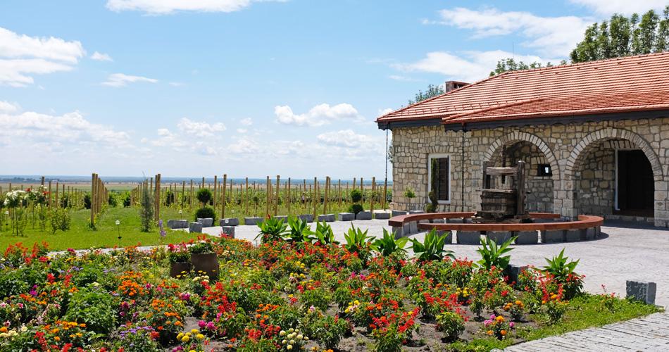 Romania Wine Tour
