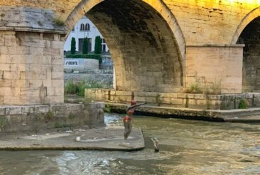 Diving Statue near the Stone Bridge in Skopje