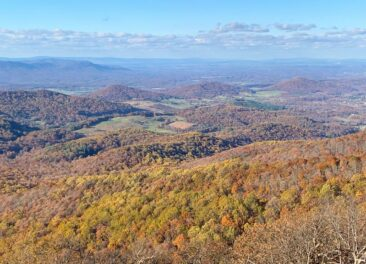 Shenandoah National Park Foliage