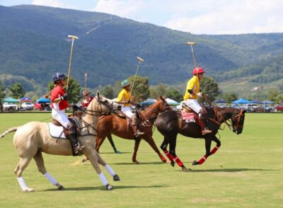 Live Polo at King Family Vineyards in Virginia
