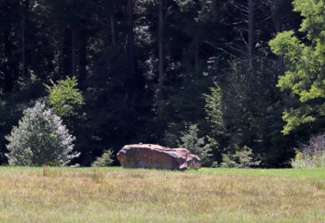 The impact stone marking the crash site of Flight 93 on 9/11.